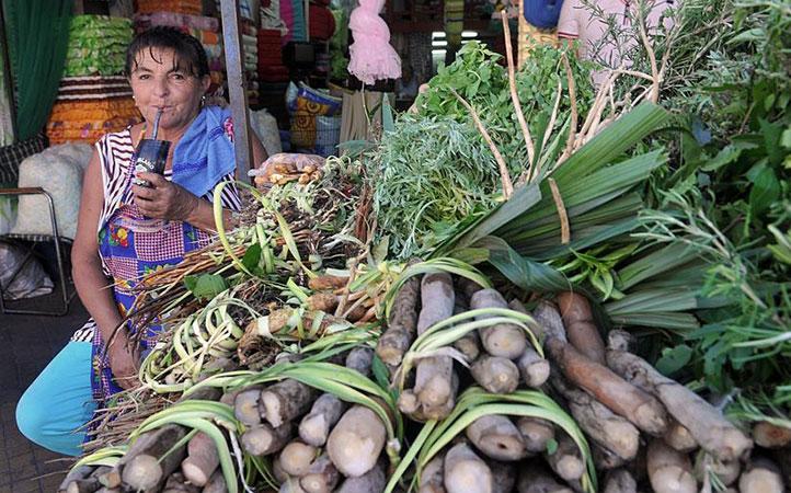 Stoisko ze świeżymi ziołami do terere - Paragwaj